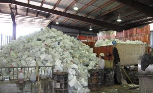 plastic specialty recycling